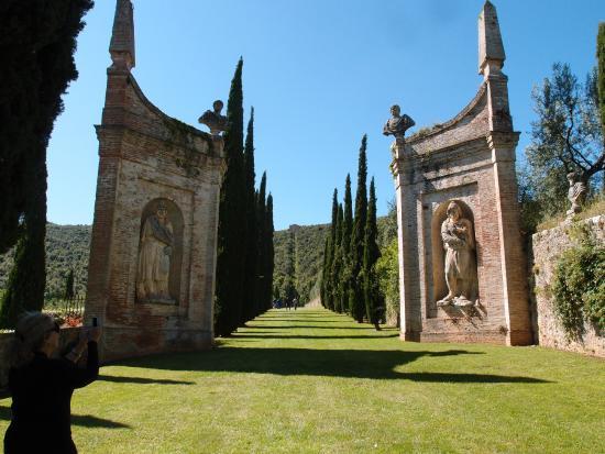 cetinale villa garden