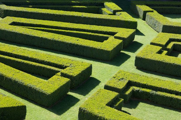 Giardino LaFoce tuscany parterre