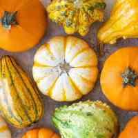 Pumpkin pie. A recipe